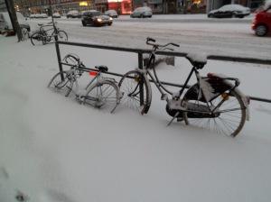 Winter (5)