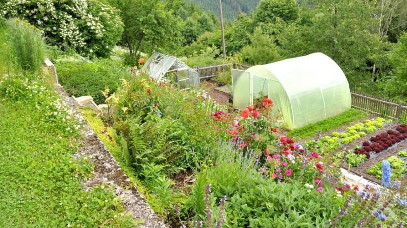 gemuesegarten.f9486699