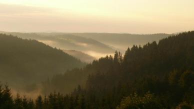 landschaft_im_nebel.1d972cf1